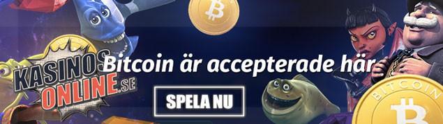 playamo kasino bitcoin