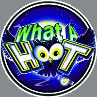 what a hoot slot